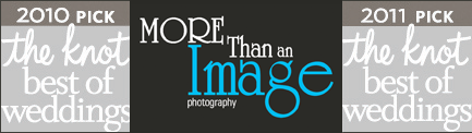 More Than an Image Photography logo